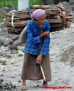 sumber pendapatan selepas bersara orang tua job di rumah